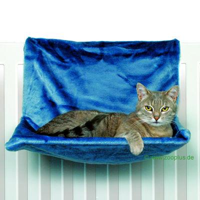 Почему кошка спит на сумке